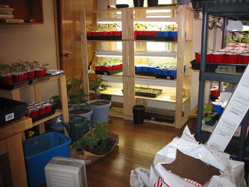 Seedling Room