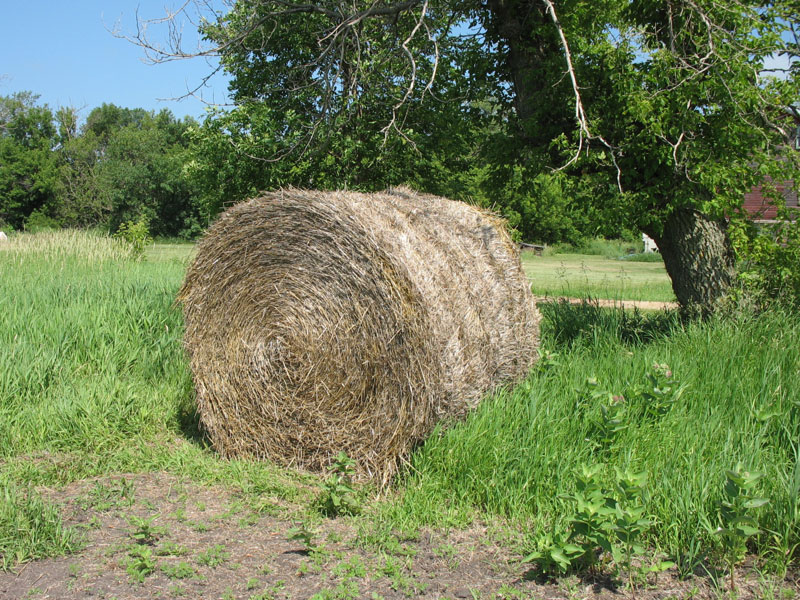 giant bale of straw