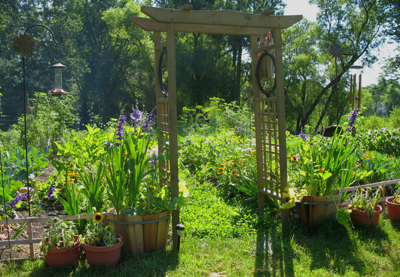 Entrance to Jessi's Garden - July 17th
