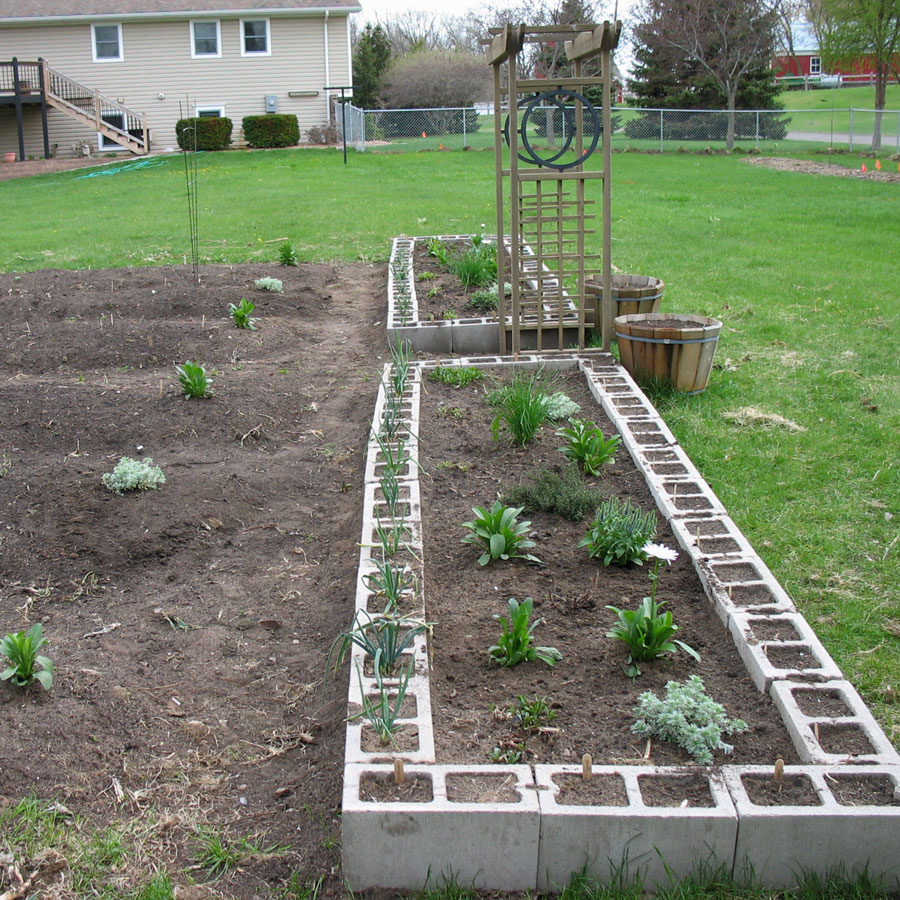 Raised bed made from concrete blocks