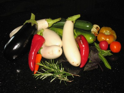 July 28th - Eggplant, Peppers, Zucchini, and a few small tomatoes