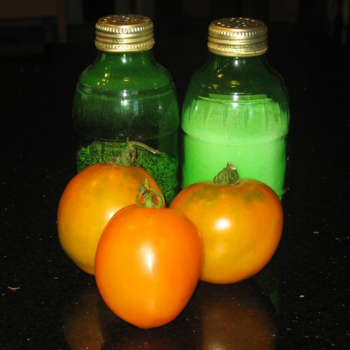 Valencia Orange Tomato