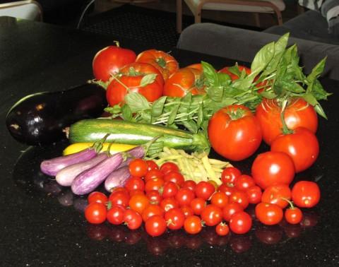 Tomatoes, Eggplant, Basil, Zucchini