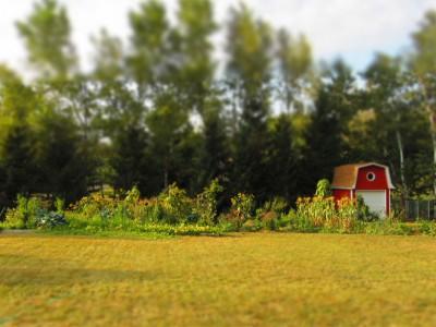 VEGarden in miniature