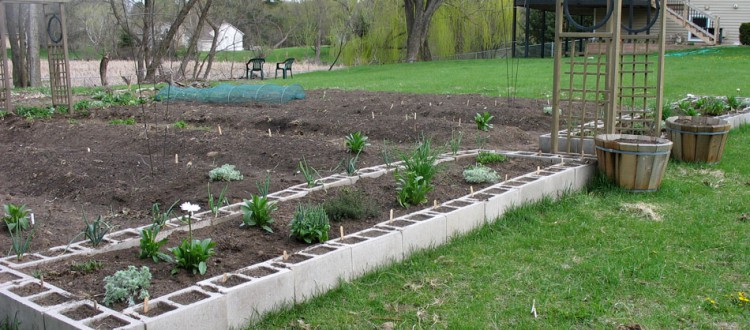 Jessi's garden, and raised beds