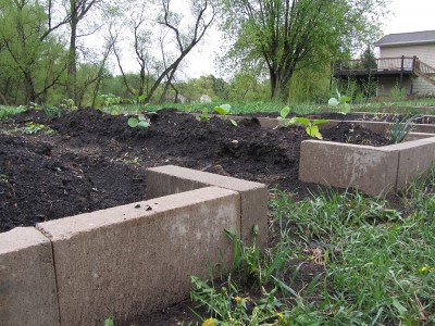 Concrete Block Garden Beds started