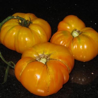 Marvel Striped Heirloom Tomatoes